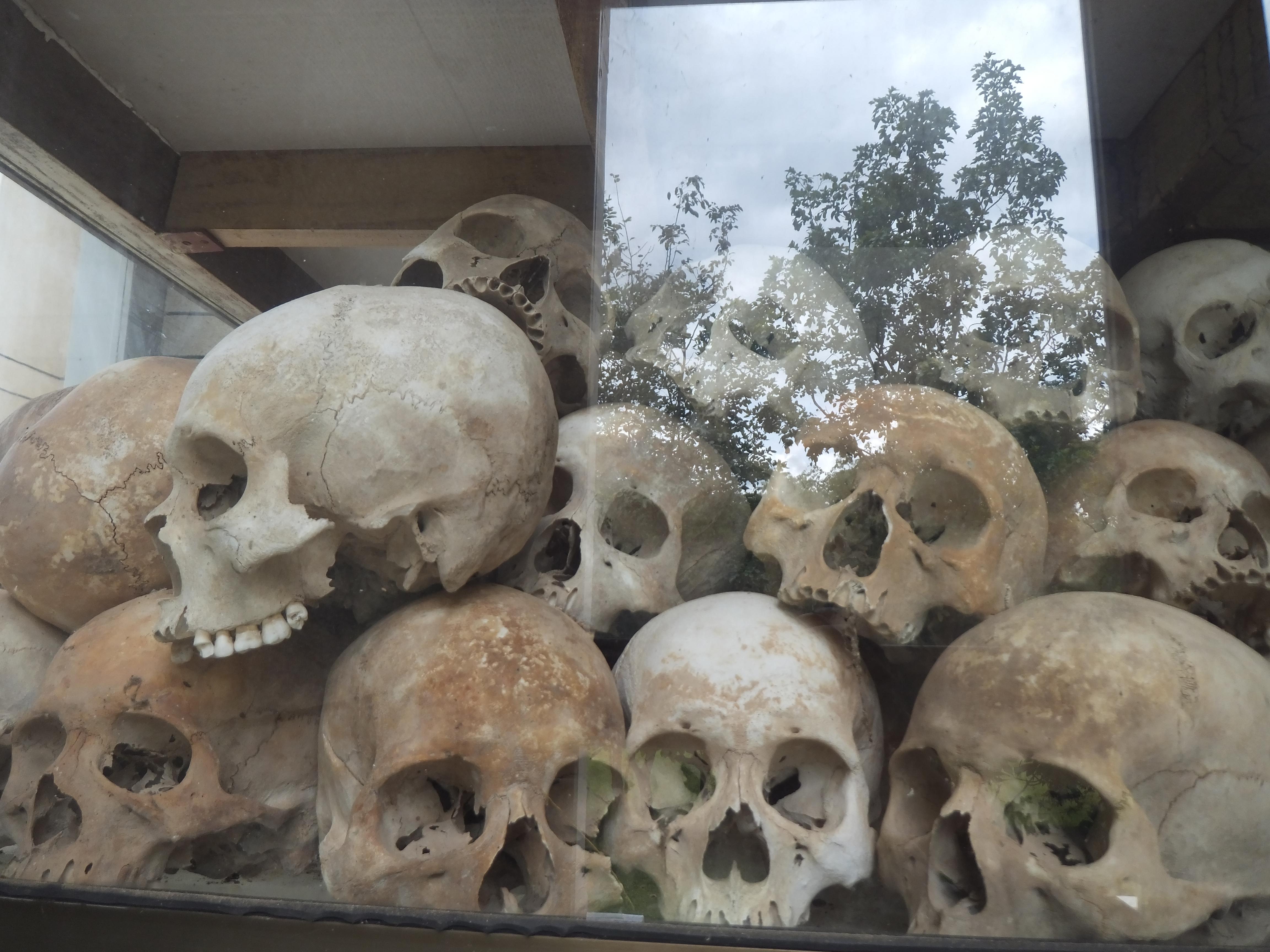 キリングフィールド 発見された骨